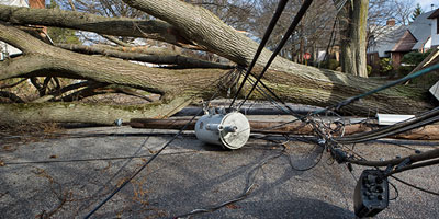 downed tree, hydro line and transformer