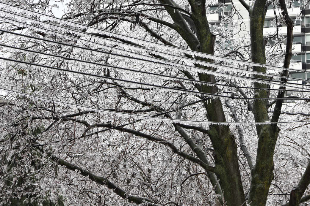 hydro lines covered in ice